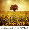 Lone tree and flowers - stock photo