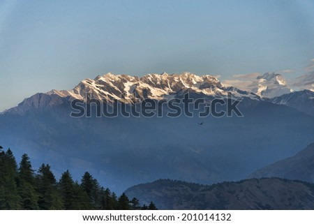 Lonely bird and snow capped mountains background illustration - stock photo