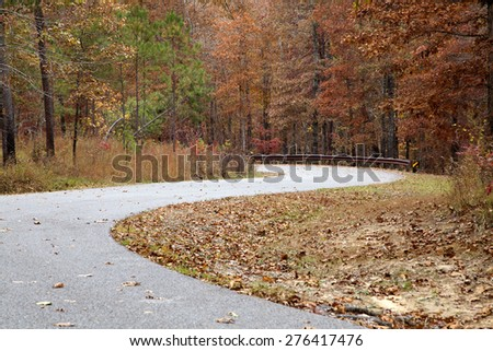 Lonely curvy road through the woods - stock photo