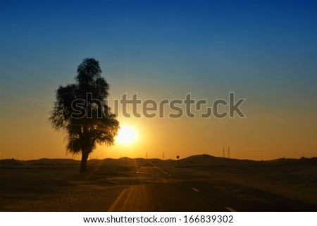 Lonely desert in sunrise, Dubai, UAE - stock photo