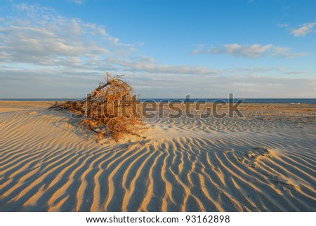 Lonely deserted beach on North Carolina's Cape Hatteras National Seashore provides solitude and space for thought - stock photo
