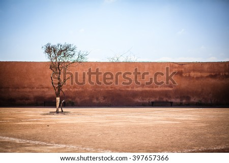 Lonely dry tree in front on an old wall against blue sky