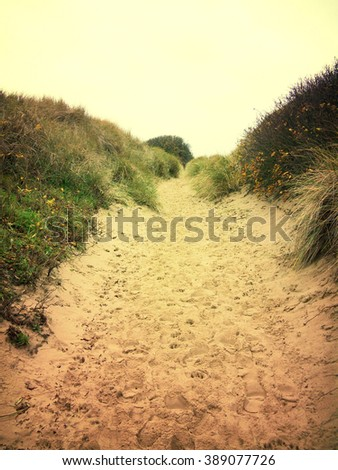 Lonely footpath through a beach dune landscape on Sylt. - stock photo