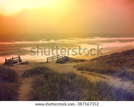 Lonely footpath through a beach dune landscape on Sylt. Beach scene with sunset on a beach of Sylt. - stock photo