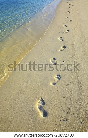 Lonely footprints on sandy beach