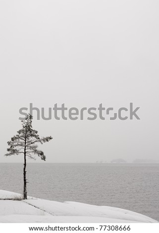 Lonely frozen tree by the lake. (Vertical comp) - stock photo