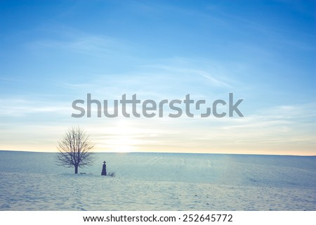lonely grave with a tree in a winter landscape with blue sky - stock photo