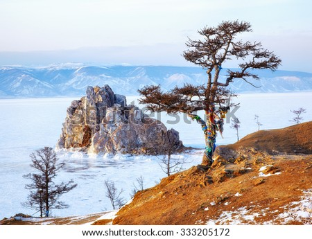 Lonely holy tree and rock Shamanka on cape Burkhan on Olkhon island in Siberian lake Baikal in winter time