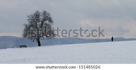 lonely man in winter - stock photo