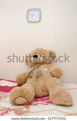 Teddy bear portraits coupon code
