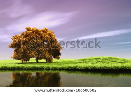 Lonely tree by the lake - stock photo