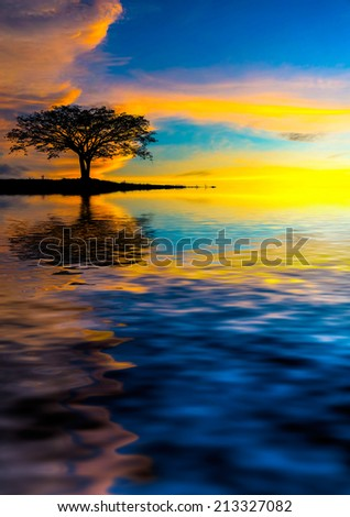 lonely tree. digital compositing with colour tone, water reflection and ripple effects. - stock photo
