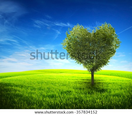 Lonely tree in field with shape from heart - stock photo
