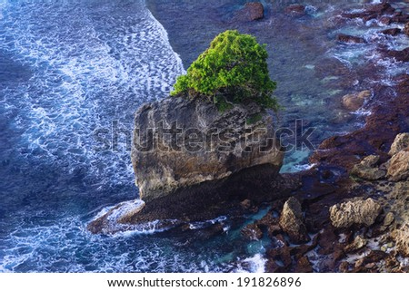 Lonely tree on stone in blue ocean landscape - stock photo