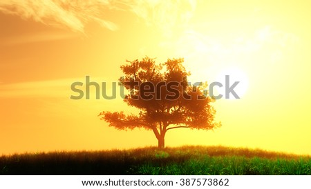 Lonely Tree on Summer Field in the Sunset Sunrise 3D Illustration