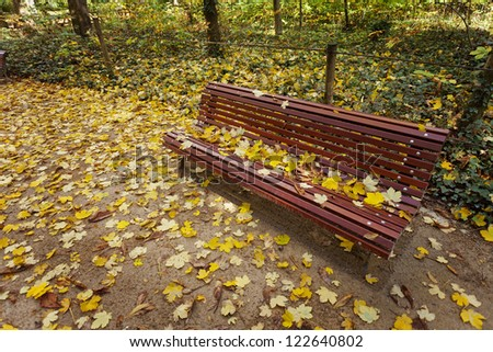 Lonely wood bench in autumn. Valladolid Park, Spain. - stock photo