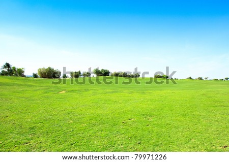 Lonesome Acres Of Green - stock photo