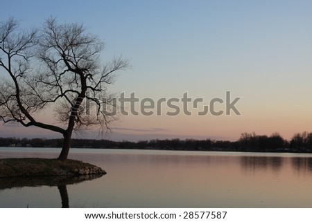 Lonesome tree at sundown