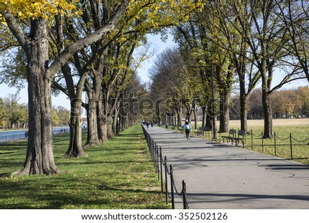 Long alley walkway through the trees next to reflecting pool and Lincoln Memorial park. December 4th 2015 pleasant weather