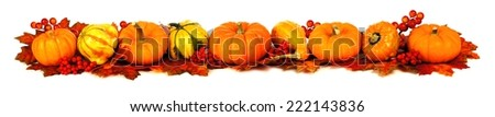 Long autumn border of pumpkins, gourds and leaves over white - stock photo