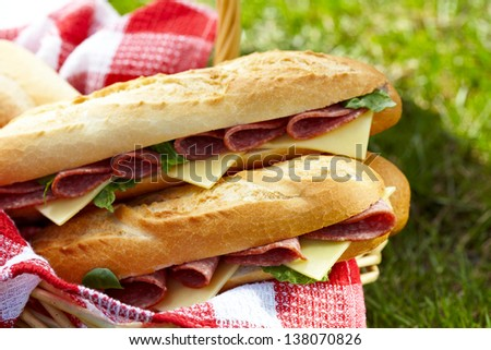 Long baguette sandwiches with salami and cheese for a picnic - stock photo