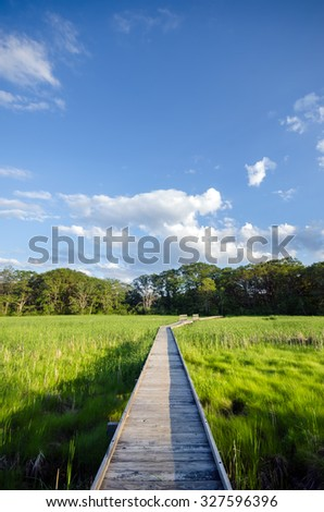 Long Boardwalk Foot Path through Wetlands in Summer - Peaceful Nature Trail on Marsh - stock photo