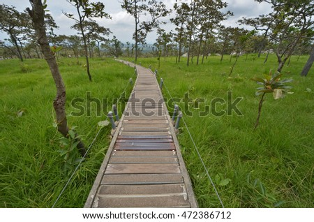 Long concrete bridge with fence on green grass field