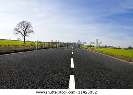Long country road with white lines down the centre stretching off past a lone tree to the distant horizon