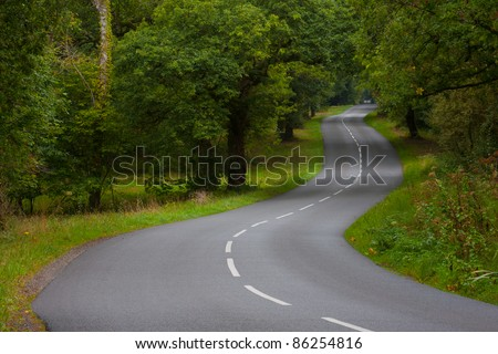 Long empty bending road in the New Forest. - stock photo