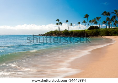 long exposure photo of kapalua bay and palm trees - stock photo