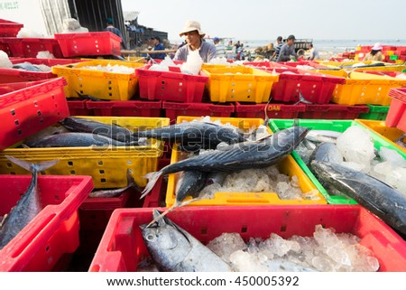 LONG HAI, VIETNAM - 03 JULY 2016: Fresh fish piled up in plastic tray