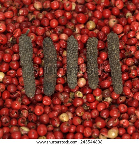 Long pepper on red pepper, close-up