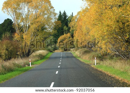 Long road stretching out into the distance with autumn tree in New Zealand