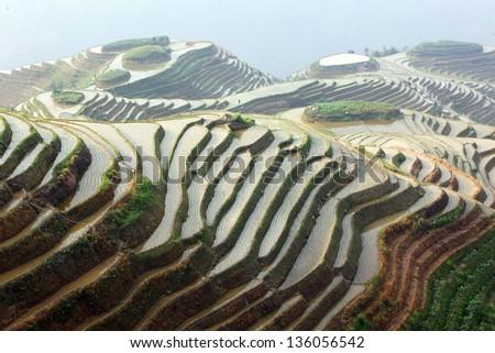 Longji rice terraces, Guangxi province, China - stock photo