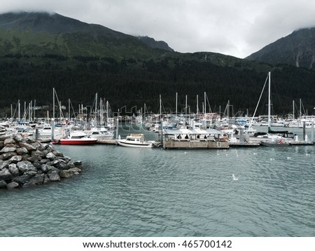 Longview of a busy boat harbor