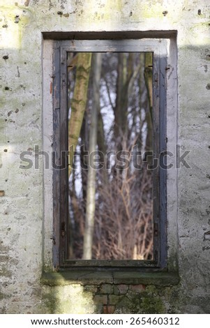 Look through a window of a ruined house in the forest with a creative focus effect.