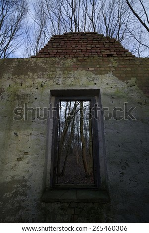 Look through a window of a ruined house in the forest with a creative upward perspective including the blue sky. - stock photo
