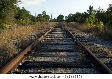 Looking down an old set of railroad tracks as the converge in the distance in an undeveloped section of florida with road crossing. - stock photo