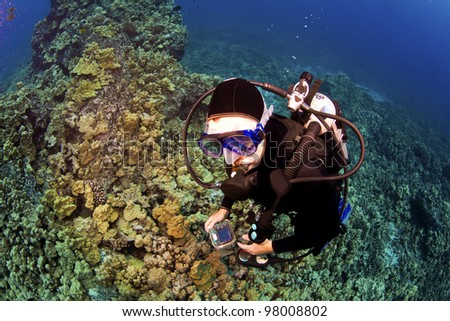 Looking Down on Diver in Kona Hawaii - stock photo