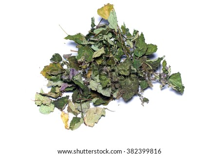 Looking down on pile of dried colorful patchouli leaves, branches, and flowers over white, not isolated. - stock photo