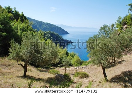Looking down to the coastline from Agii Anargiroi on the Greek island of Alonissos. - stock photo