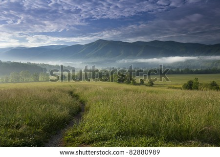 Looking out in Cades Cove in the Great Smoky Mountain National park. The trees lining Hyatt Lane are seen off in the distance. - stock photo
