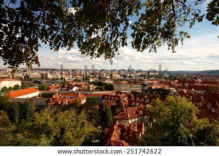 Looking over the rooftops of building framed with a tree - stock photo
