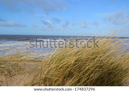 Looking through the wind blown grass to the ocean off of Formby Beach, England. - stock photo