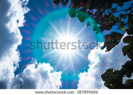 Looking up at Nice blue sky with sun beam and halo with cloudy with leaf foreground - stock photo