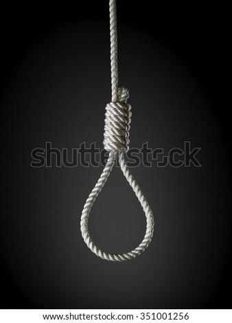 loop of white rope on a gray background - stock photo