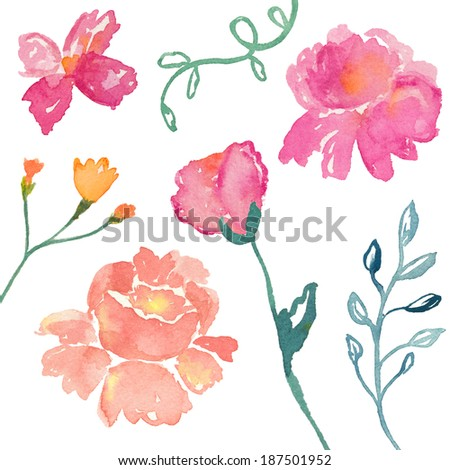 Loose Watercolor Flower Collection. Isolated Watercolor Flowers. Watercolor Leaves. Watercolor Ferns. Watercolor Laurel Branches
