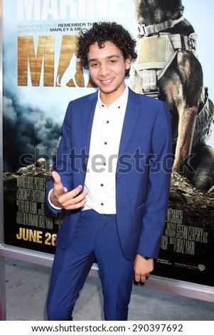 "LOS ANGELES - JUN 23:  Dejon LaQuake at the ""Max""  Premiere  at the Egyptian Theater on June 23, 2015 in Los Angeles, CA - stock photo"