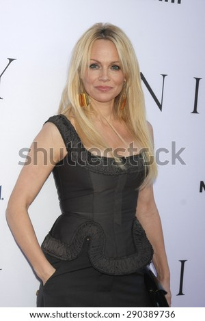 "LOS ANGELES - JUN 24:  Pamela Anderson at the ""Unity"" Documentary World Premeire at the Director's Guild of America on June 24, 2015 in Los Angeles, CA - stock photo"