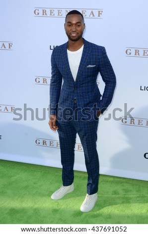 LOS ANGELES - JUN 15:  Tye White at the Greenleaf OWN Series Premiere at the The Lot on June 15, 2016 in West Hollywood, CA - stock photo